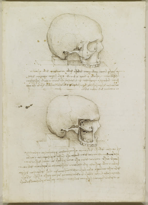 Leonardo da Vinci made anatomical drawings of the human skull in 1489. These sketches, acquired by English King Charles II, are now housed in Britain's Royal Collection in Windsor.