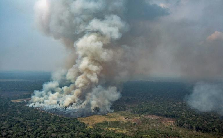 An aerial picture released by Greenpeace showing smoke billowing from forest fires in the municipality of Candeias do Jamari, close to Porto Velho in Rondonia State, in the Amazon basin in northwestern Brazil, on August 24, 2019