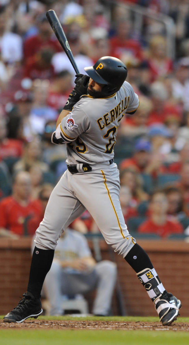 Pittsburgh Pirates' Francisco Cervelli is hit by the pitch from St. Louis Cardinals' Miles Mikolas during the third inning of a baseball game Friday, June 1, 2018, at Busch Stadium in St. Louis. (AP Photo/Bill Boyce)