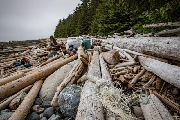 Rope and other plastic debris regularly becomes tangled up in logs on many of B.C.'s beaches. (Greg Rasmussen/CBC - image credit)