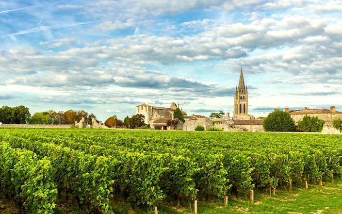 """""""Landscape around us, from apple orchards morphing into fields of nodding sunflowers and drying corn, to the tidy rows of vineyards around Bordeaux"""" - istock"""