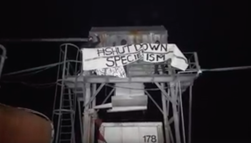 Activists unfurled a banner at the meat farm (Picture: Smash Speciesism)
