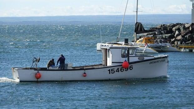 Lobster boats from the Mi'kmaw community of Listuguj in the Gaspé returned with their first fall catch on Monday. For the first time, Canada's Department of Fisheries and Oceans has issued a commercial license for the annual September and October harvest. (Isabelle Larose/Radio-Canada - image credit)