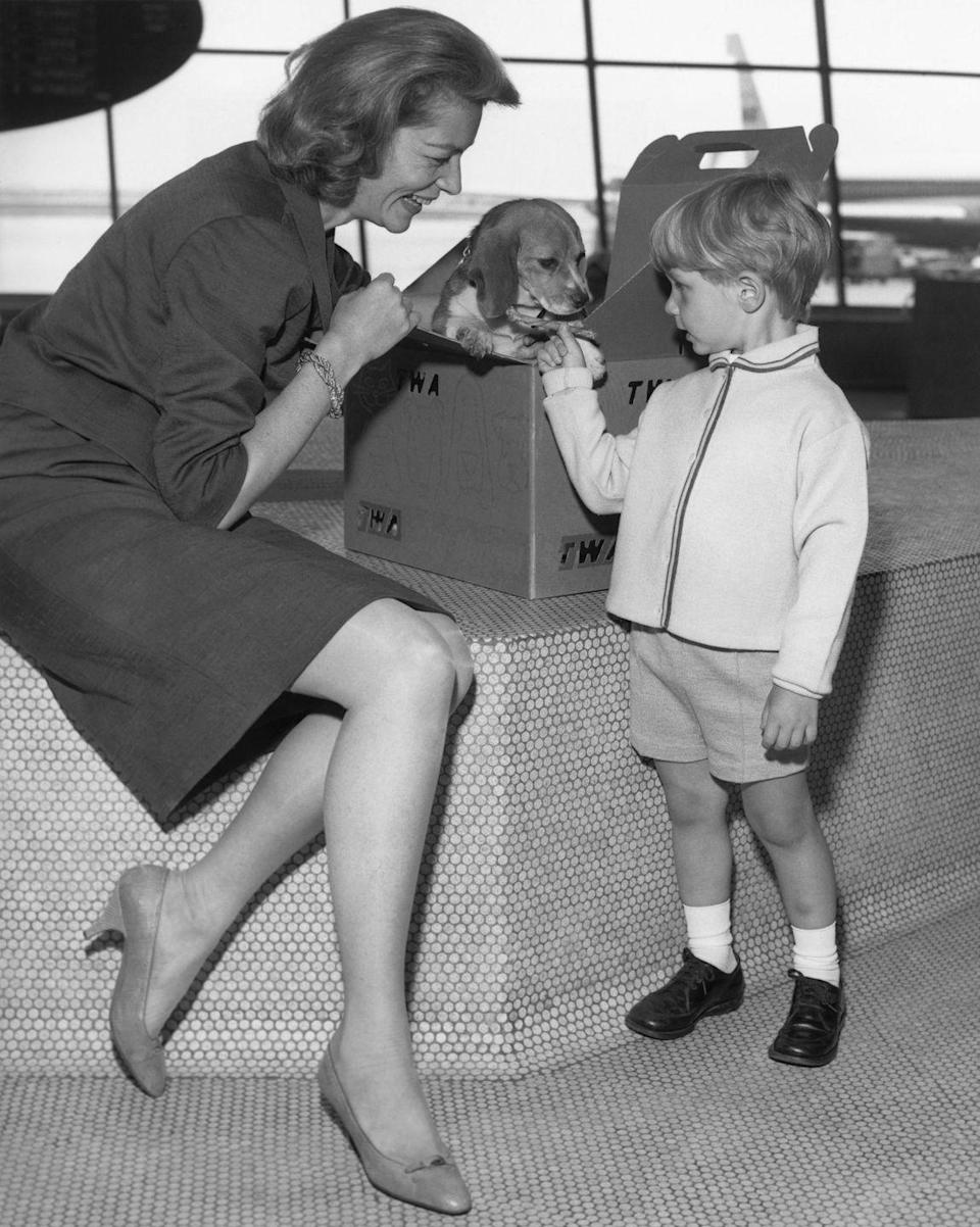 <p>Lauren Bacall made her son's day by gifting him a brand new Beagle puppy in 1965. Here, Lauren and Sam Robards get ready to board their flight to Los Angeles, as they place Daisy in her travel kennel.</p>