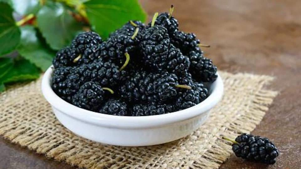 #HealthBytes: Reasons why you should eat more of mulberries