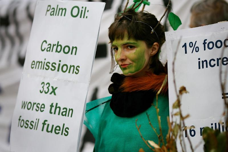 Second only to rapeseed as a biofuel, overall palm oil use in EU countries jumped six-fold from 2010 to 2015, according to data obtained by Brussels-based NGO Transport & Environment (AFP Photo/Ben Stansall)