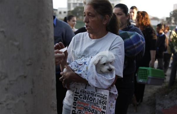 People queue with their pets outside the Anclivepa-SP veterinarian hospital which opened two months ago offering free health care for the pets of low-income residents, in Sao Paulo August 22, 2012.