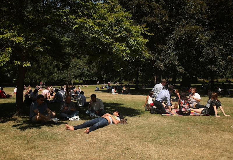 Hot weather: Londoners shelter under a tree as the grass turns yellow in St James's Park: PA