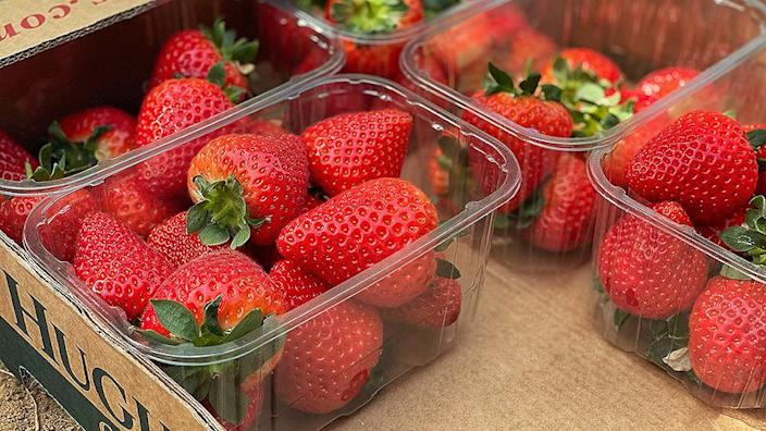 Punnet of Ace strawberries