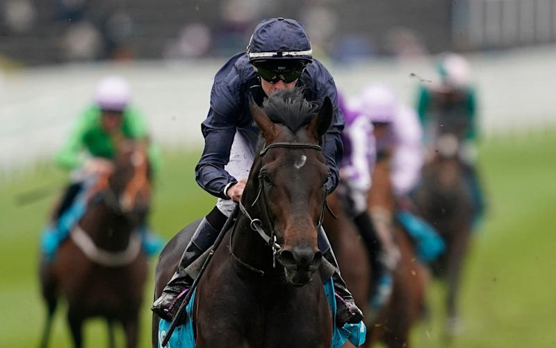 Sir Dragonet, a runaway winner of the Chester Vase earlier this month, may well run in the Investec Derby after all - Getty Images Europe