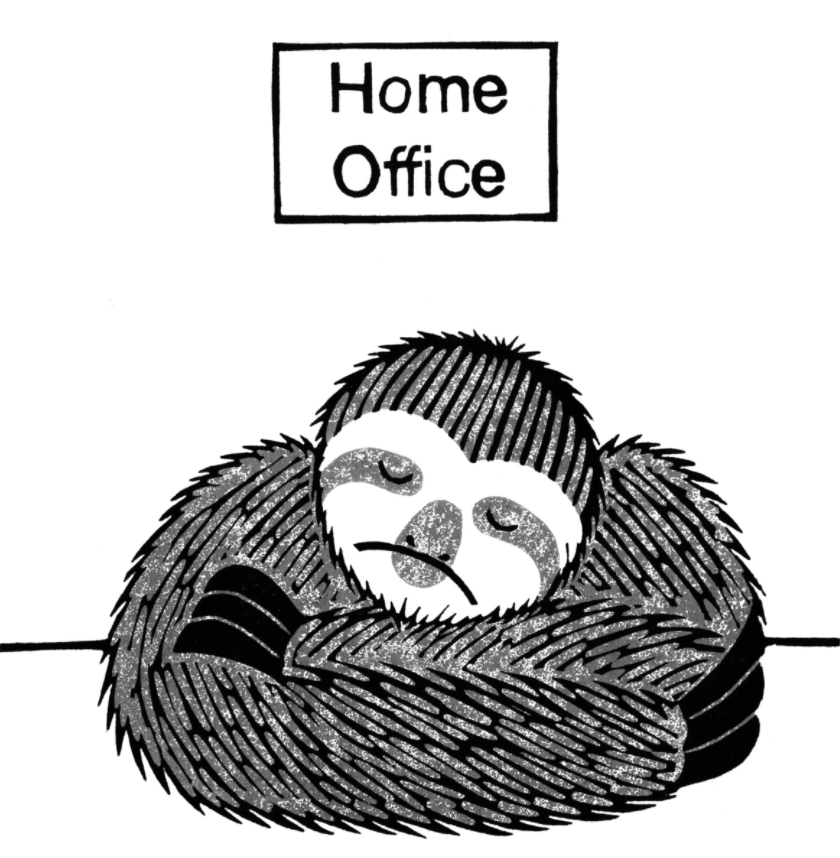 At least two study participants described the Home Office as a 'slow' sloth.Patrick Kennedy