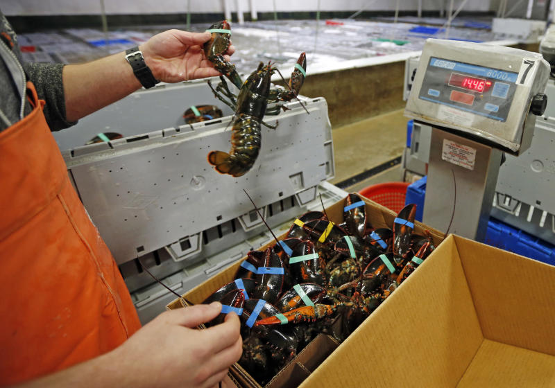 Lobster-crazy China sets record for US crustacean imports