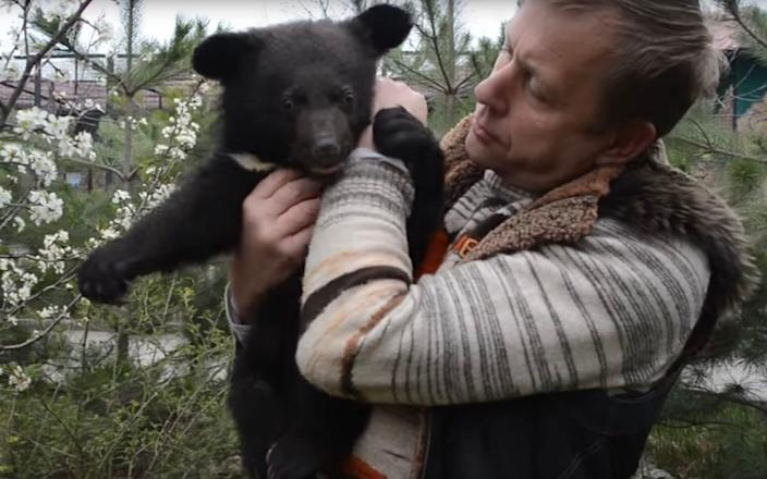 Russian-annexed Crimea safari park owner, Oleg Zubkov, has announced he is giving away more than 30 bears from one of his parks