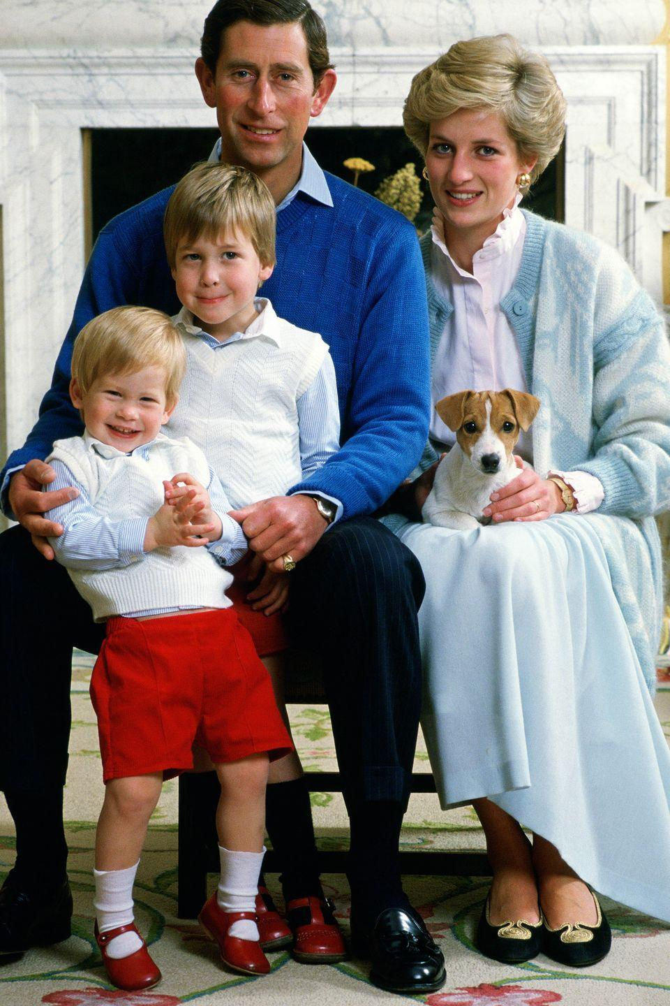 <p>Prince Charles, Princess Diana, Prince William, and Prince Harry smile for a family photo in Kensington Palace. </p>