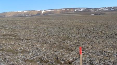 General view of a landscape of intact Arctic permafrost near Mould Bay
