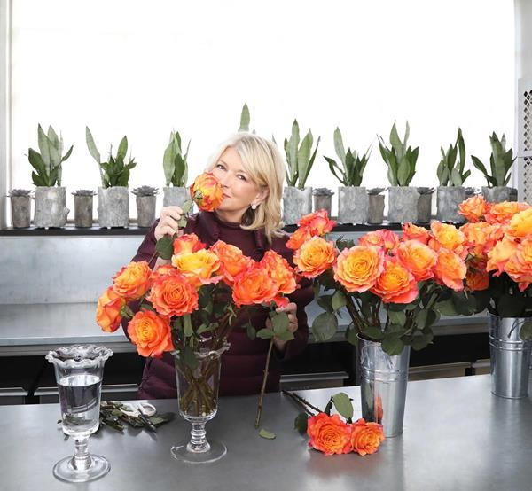 Martha Stewart and BloomsyBox.com: Martha Stewart Launches Floral Subscription Line with BloomsyBox.com