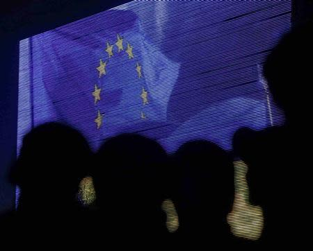 People are silhouetted against a screen showing the European Union flag as they attend a rally in support of euro integration in central Kiev November 22, 2013. REUTERS/Gleb Garanich