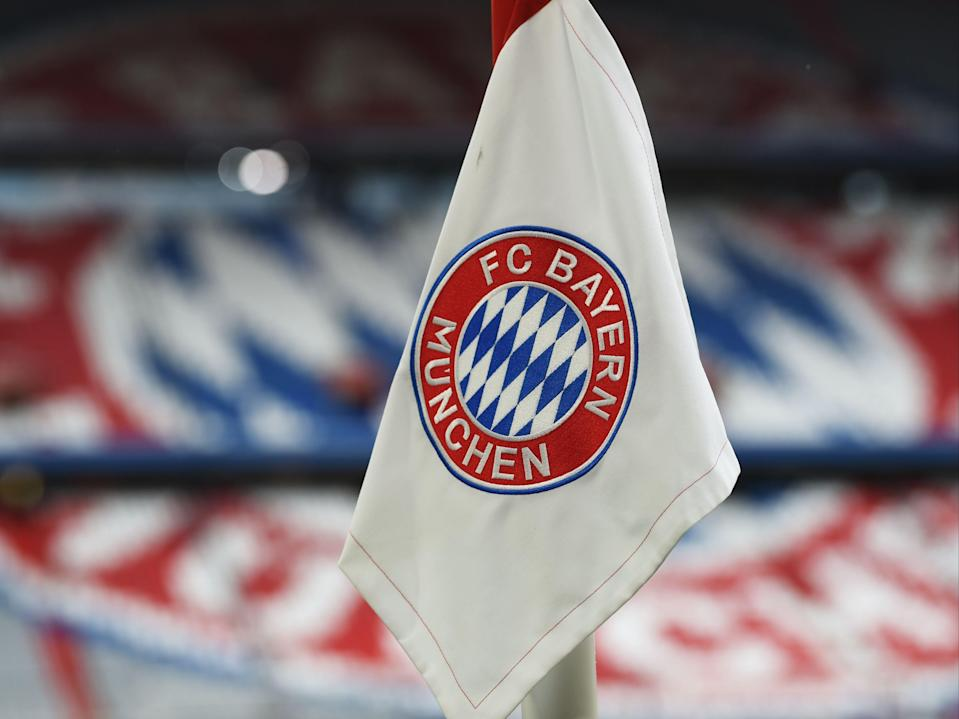 <p>German football teams are all majority-owned by fans</p> (AFP via Getty Images)