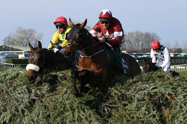 Tiger Roll will have to shoulder top weight of 11 stone 10 pounds (74 kilogrammes) if he is to become the first horse to win three successive Grand Nationals (AFP Photo/Paul ELLIS)