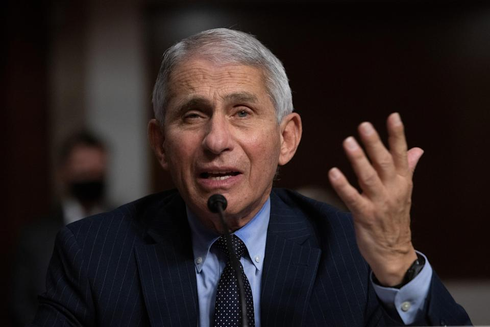 File: Dr Anthony Fauci speaks at a Senate committee hearing on Covid-19 on 23 September (Alex Edelman / Pool via CNP / SplashNews.com)