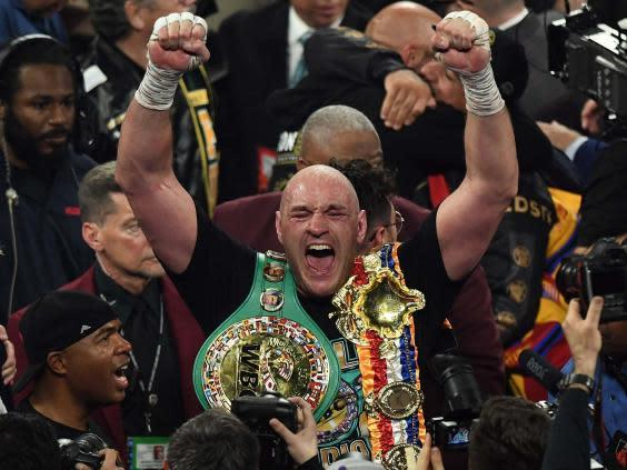 Fury dismantled Wilder to recapture the heavyweight crown (AFP)