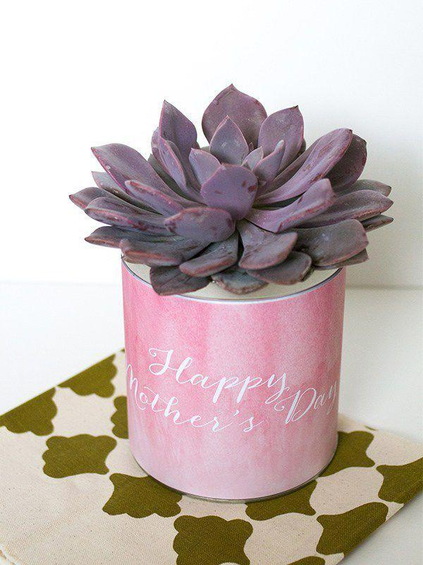 "<p>Don't throw that tin away: Pretty it up with a watercolor label and an easy houseplant that doesn't need a lot of attention.<br></p><p><a class=""link rapid-noclick-resp"" href=""https://www.amazon.com/Succulent-Plants-Fully-Rooted-Planter/dp/B079RKPQSP/ref=sr_1_2_sspa?keywords=succulent&qid=1553004966&s=gateway&sr=8-2-spons&psc=1&tag=syn-yahoo-20&ascsubtag=%5Bartid%7C10055.g.2412%5Bsrc%7Cyahoo-us"" rel=""nofollow noopener"" target=""_blank"" data-ylk=""slk:SHOP SUCCULENTS"">SHOP SUCCULENTS</a></p><p><em><a href=""https://sarahhearts.com/mothers-day-planter/"" rel=""nofollow noopener"" target=""_blank"" data-ylk=""slk:Get the tutorial at Sarah Hearts »"" class=""link rapid-noclick-resp"">Get the tutorial at Sarah Hearts »</a></em></p>"
