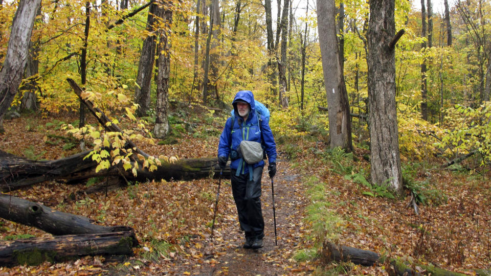 Artist Rob Mullen walks down Long Trail, the country's oldest long distance trail, in Manchester, Vt., on Tuesday, Oct. 13, 2020. Mullen was nearing the end of his 272-mile month-long hike down the length of Vermont, painting along the way. (AP Photo/Lisa Rathke)
