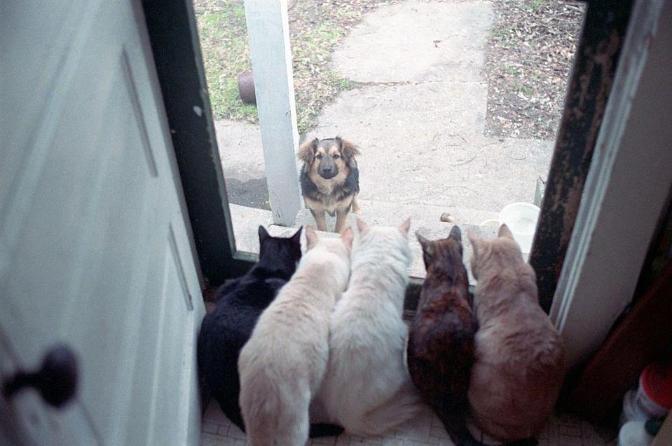 """<p>""""You can't sit with us!""""</p>"""