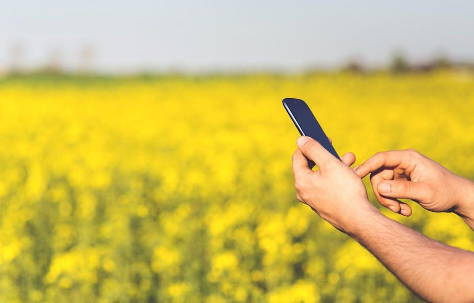 """<span class=""""caption"""">Farmers, cottagers and small business organizations are among the groups clamouring for better broadband in Ontario, especially in the midst of the COVID-19 pandemic.</span> <span class=""""attribution""""><span class=""""source"""">(Pexels)</span></span>"""