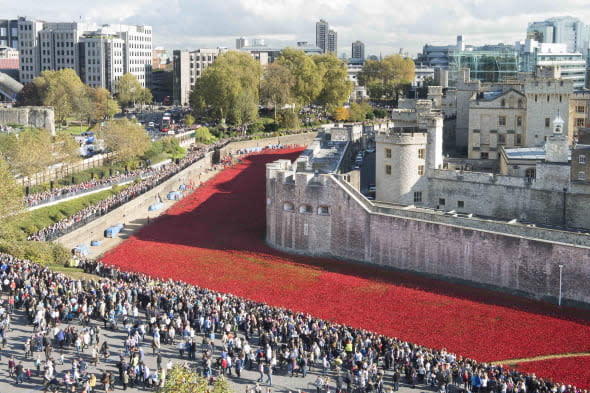 Poppy site visitors urged to plan their trip carefully