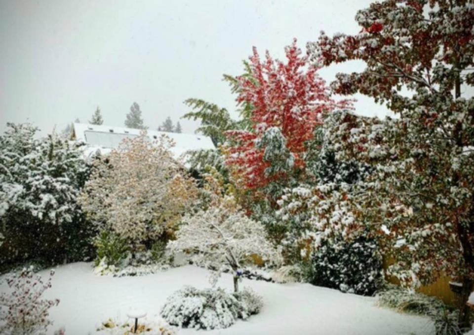 Blast of early-season wet snow snarls travel, triggers outages in B.C.