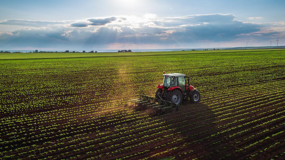 """<p>Sustainable food and sustainable agriculture go hand-in-hand. Sustainable agriculture is a production system <a href=""""https://www.theactivetimes.com/health-living/environment-affects-health/slide-4?referrer=yahoo&category=beauty_food&include_utm=1&utm_medium=referral&utm_source=yahoo&utm_campaign=feed"""">that's good for the environment,</a> people, farm workers and animals. """"Many people are surprised when we say farmers are the first environmentalists, but it's true,"""" Walmsley told The Daily Meal via email. In fact, more than 15% of all farmland is dedicated to conservation and wildlife habitat. """"All of this is to say that society's increasing interest in sustainability is really just catching-up to farmers' longstanding commitment to it,"""" he said. And according to the One Earth Science & Technology Initiative, proper farming without the use of pesticides actually increases the soil's carbon content and fertility.</p>"""