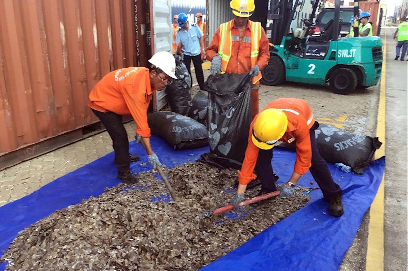 Vietnam confirmed the haul and also announced a separate seizure of 8.3 tonnes of pangolin scales from 'an African country' in the northern Haiphong port