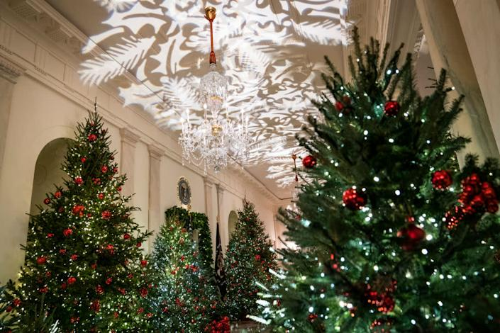Christmas Trees line the hall during the White House Christmas preview in the Cross Hall of the White House on Monday, Nov. 26, 2018 in Washington, DC. (Photo by Jabin Botsford/The Washington Post via Getty Images) | The Washington Post—The Washington Post/Getty Images