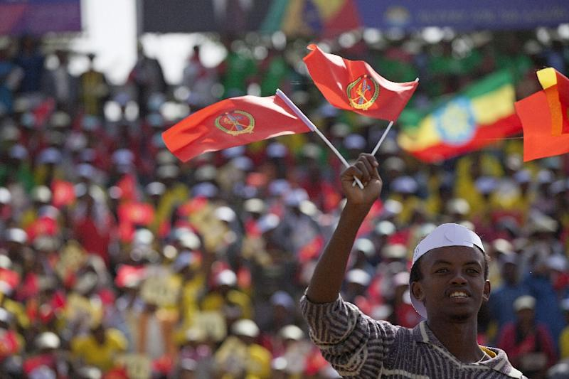 A young man waves the ruling party Ethiopian People's Revolutionary Democratic Front (EPRDF) flag in front of a large crowd during an election EPRDF rally in Addis Ababa on May 21, 2015 (AFP Photo/Zacharias Abubeker)