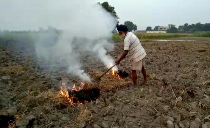 """This Oct. 14, 2019 frame from video shows a farmer burning paddy stubble in a field in Amritsar, India, Wednesday, Oct. 16, 2019. The Indian capital's air quality levels have plunged to """"poor,"""" a day after the government initiated stricter measures to fight chronic air pollution. The state-run Central Pollution Control Board's air quality index for New Delhi stood at 299 on Wednesday, about six times the recommended level. (AP Photo)"""
