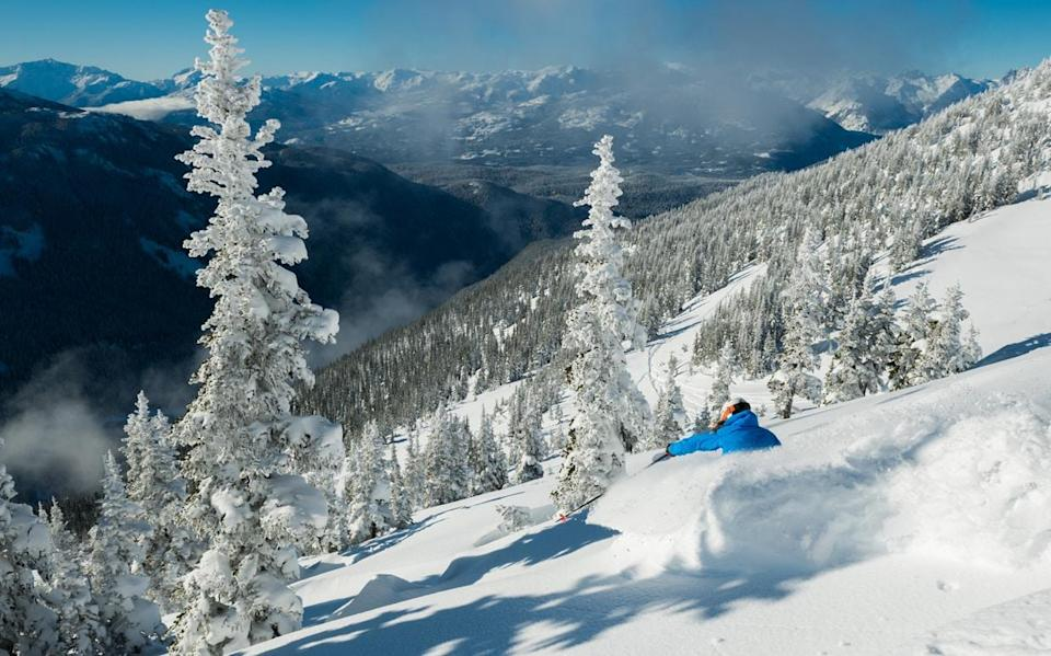 Tree skiing isn't just for experts in Canada - Mike Crane info@mikecranephotography.com
