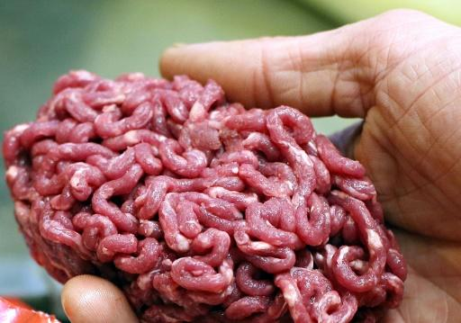 Police smash Europe-wide horsemeat racket