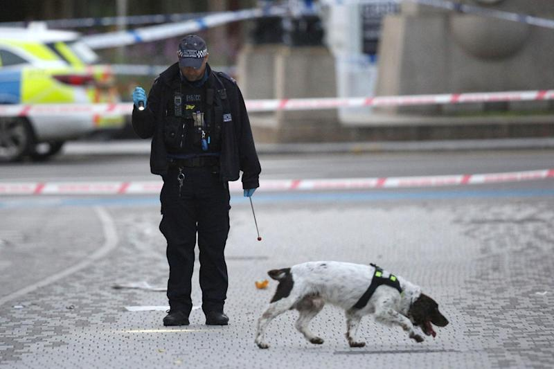 Police search the area following the fatal knife attack (PA)