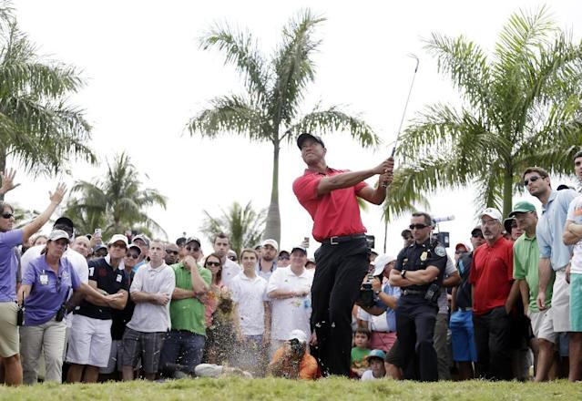 Tiger Woods hits from the rough off the seventh fairway during the final round of the Cadillac Championship golf tournament Sunday, March 9, 2014, in Doral, Fla. (AP Photo/Lynne Sladky)