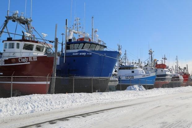 Snow crab boats are stored for the winter near Shippagan's wharf.