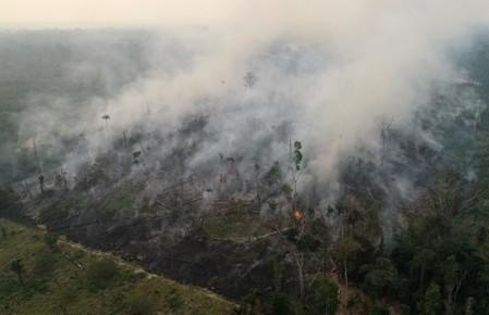 Brazil tells ambassadors no time off due to Amazon fires