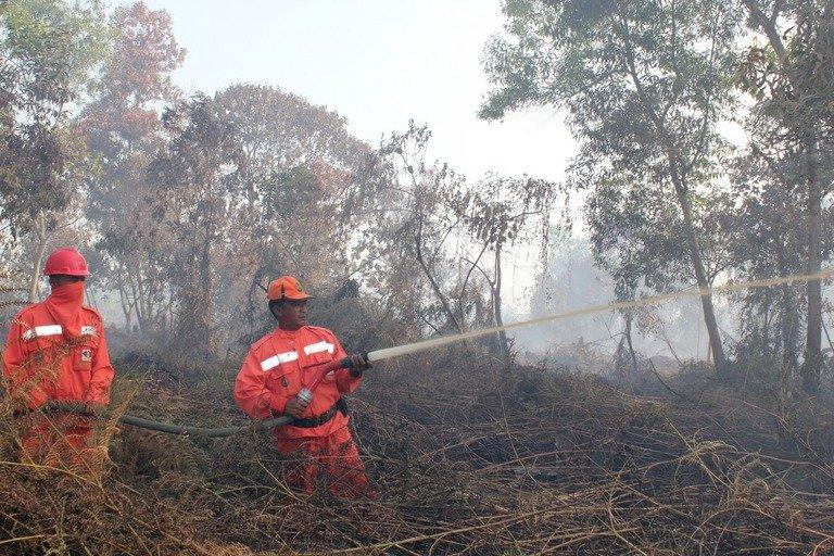 Indonesian firefighters from the Forest Ministry battle forest fires in Pekanbaru city, capital of Riau province, on Sumatra island, and about 320 km west of Singapore, on June 20, 2013. Indonesia on Friday dispatched helicopters to create artificial rain in a desperate bid to fight raging fires that have choked Singapore, as smog cloaking the city-state hit record-breaking levels