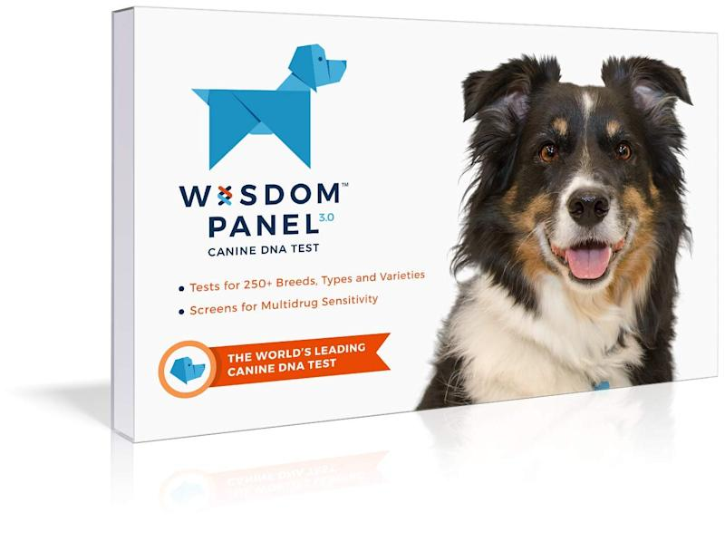 this dog dna test has thousands of near perfect reviews on amazon. Black Bedroom Furniture Sets. Home Design Ideas