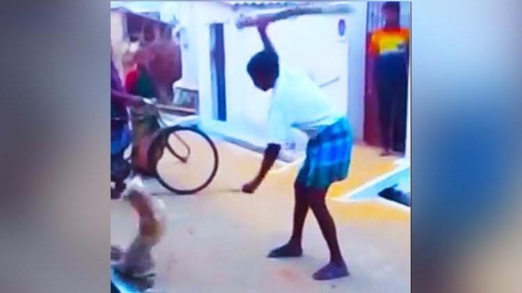 Video Clip Shows Man Beating Dog to Death, Chennai Cops to Probe