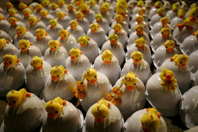 Stuffed toy ducks are displayed on top of helmets as pro-democracy protesters take part in an anti-government rally outside the headquarters of the Siam Commercial Bank in Bangkok