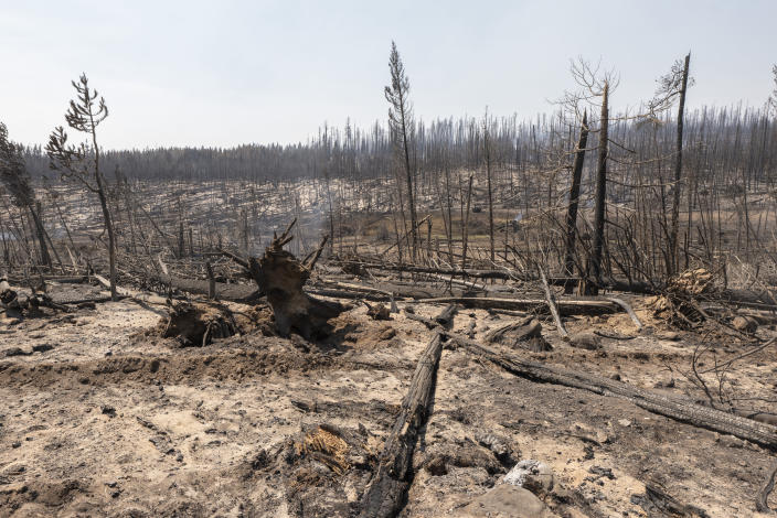 Area damaged by the Bootleg Fire smolders near the Northwest edge of the blaze on Friday, July 23, 2021, near Paisley, Ore. (AP Photo/Nathan Howard)