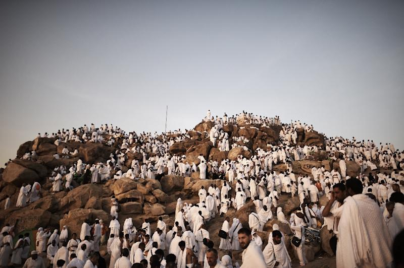 Muslim pilgrims gather on Mount Arafat near Mecca as they perform one of the Hajj rituals on October 3, 2014 (AFP Photo/Mohammed al-Shaikh)