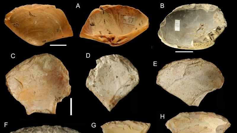 Neanderthals dove into the sea to collect shells – study