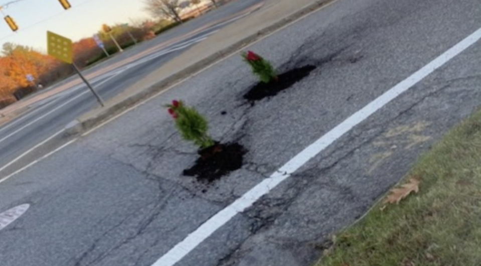 A man from Massachusetts filled potholes with Christmas trees, after he got four flat tyres in a single trip. Source: NBC 10 News